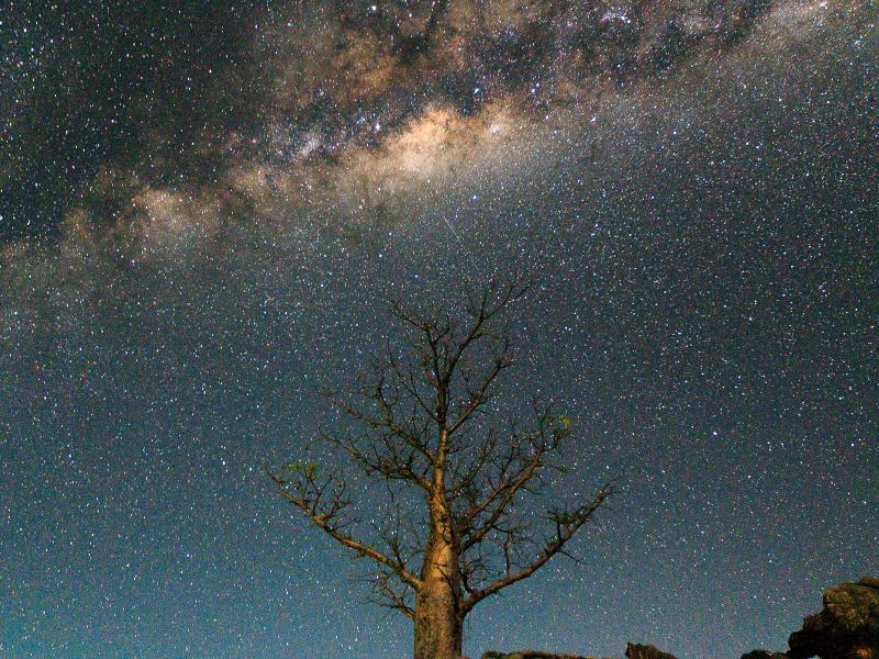 Boab Milkyway in the Kimberley