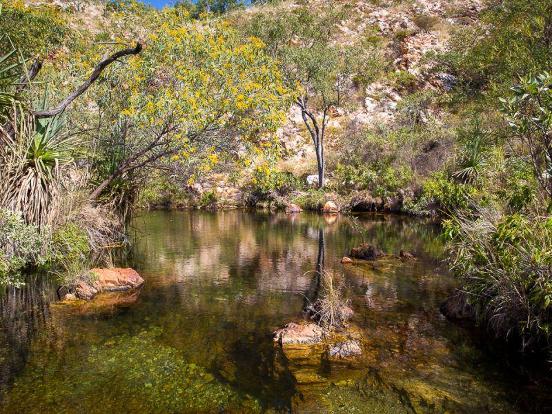 20170628_Crocodile Creek__MG_5408.jpg